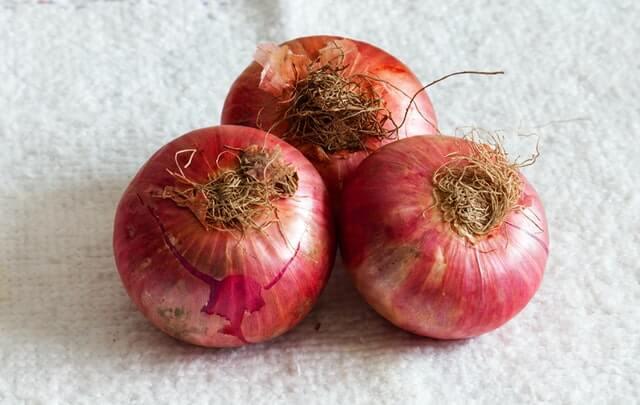 onion export latest news 2021 - कांदा निर्यात बंदी उठविताच भावात सुधारणा