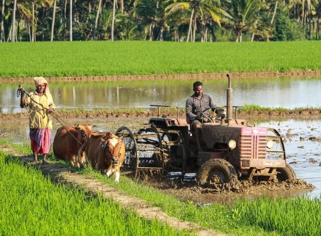 Sharad Pawar Gram Samrudhi Yojana -  राज्य सरकारचा शेतकर्यांसाठी मोठा निर्णय शेतकऱ्यांना मिळणार वैयक्तीक व तीन पट अनुदान 2021